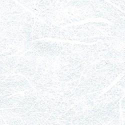 stamperia papier ryżowy biały 70*100 DFTG001