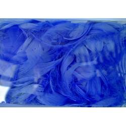 pióra w pudełku kolor wrzosowy niebieski