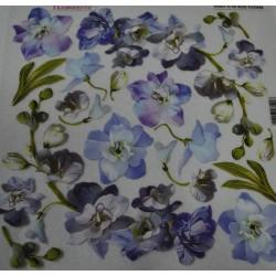 folia sospeso 4/06 blue flower