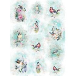 *** papier ryżowy A-4 R1670 ptaki akwarelka