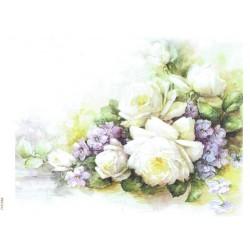 ***papier cienki A-6 1441 malowane róże
