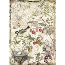 papier ryżowy A-4 DFSA4459 forest ptak gniazdo