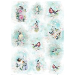 *** papier ryżowy A-3 R516L akwarelki ptaki
