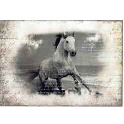 ***papier cienki A-5 2266 koń, napisy
