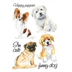 prasowanka A4 pieski happy puppies