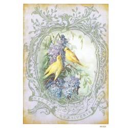 ***papier ryżowy A-6 1225 żółte ptaki w ramce