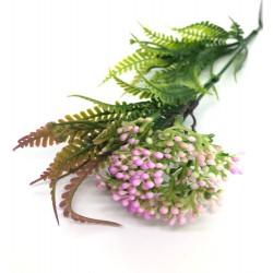 kwiatki fuksja drobne z paprocią