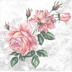 ***serwetka 33x33 K203 różana róża