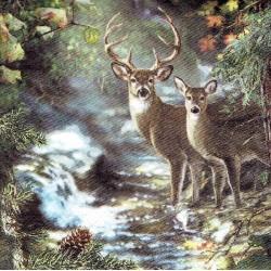 ***serwetka 33x33 Z83 jelenie nad strumykiem