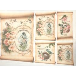 papier ryżowy 32*45 cm ptaki w ramce