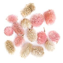 suszone owoce dekoracja-14 szt
