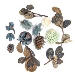 suszone owoce i liście dekoracj..14 szt