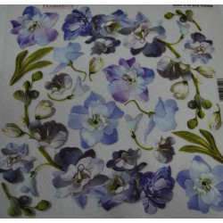 folia sospeso 4/06 blue flower