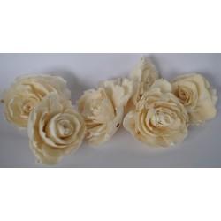 ***kwiaty natur.maniok 6 cm/6 szt