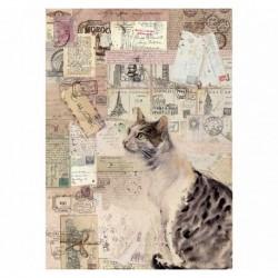stamperia papier ryżowy A-4 dfsa4377 kot