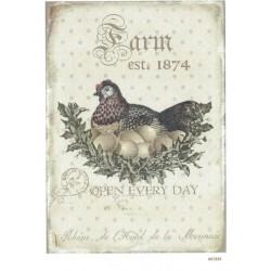 ***papier cienki A-6 1823 kura z jajkami
