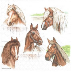 ***serwetka 33*33 Z36 konie