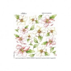 folia sospeso 3/10 magnolia