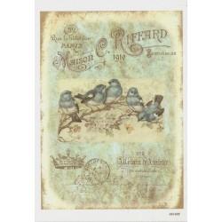 ***papier cienki A-6 1402 ptaszki vintage