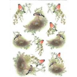 *** papier ryżowy A-4 kod.0085 gniazdo,ptaki