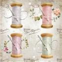 ryżowy Monica Paruta, DFSA4....